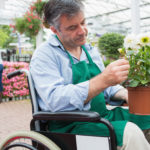 Man in wheelchair working at a Garden Center and holding potted plant.