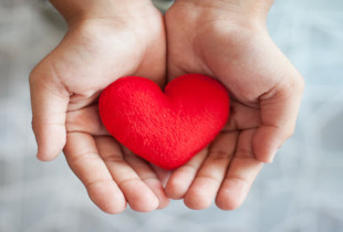 Hands together holding a red heart